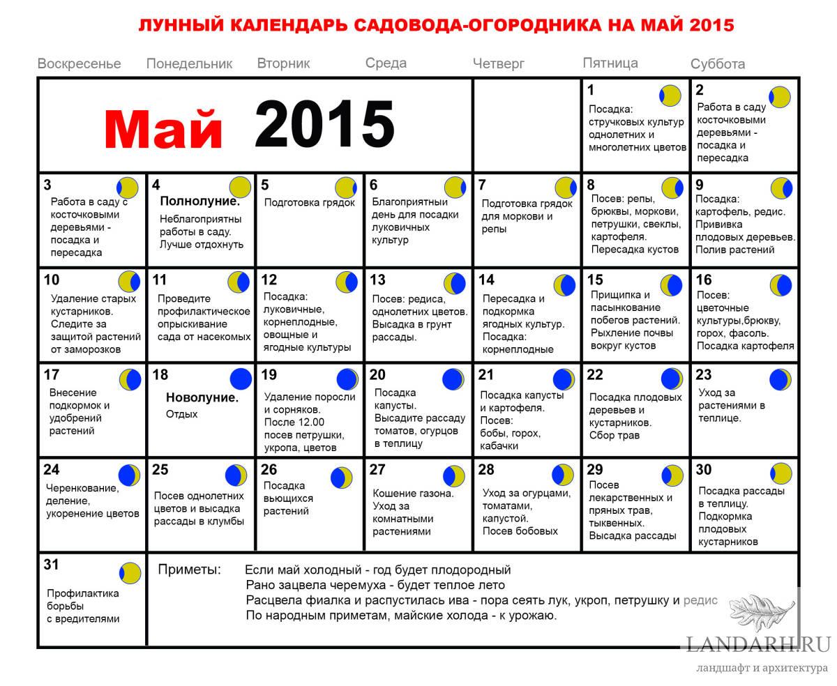 Магический календарь магия